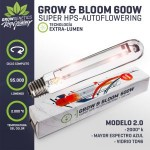 Ampolleta Grow & Bloom 600W